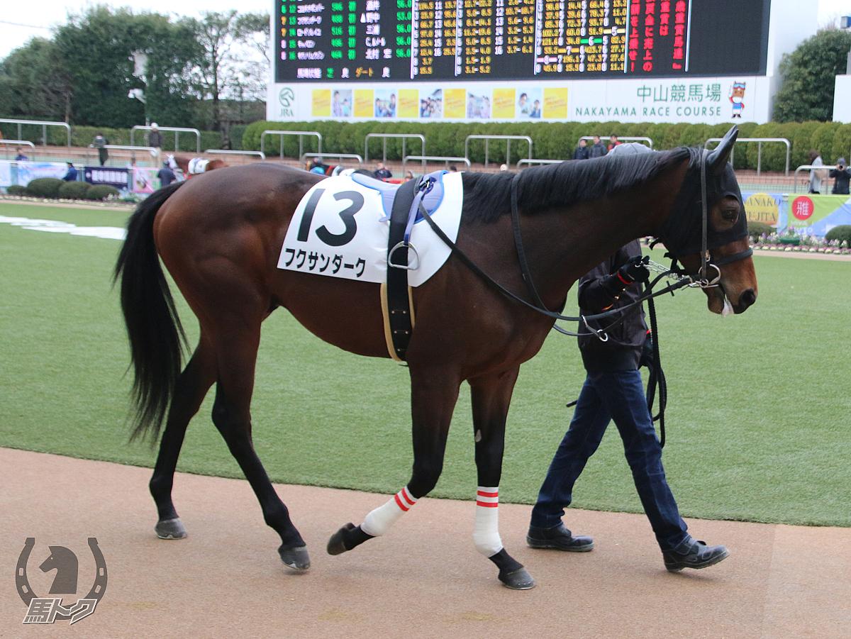 フクサンダークの馬体写真