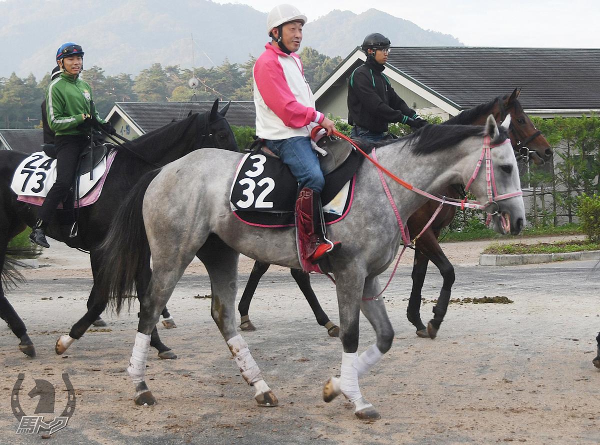 クールリチャードの馬体写真