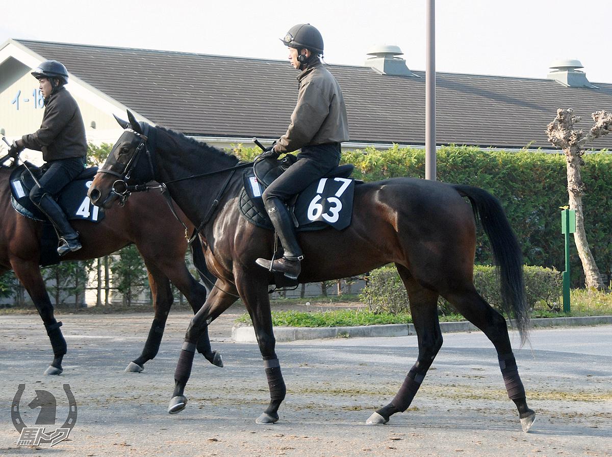 ジュルビアンの馬体写真