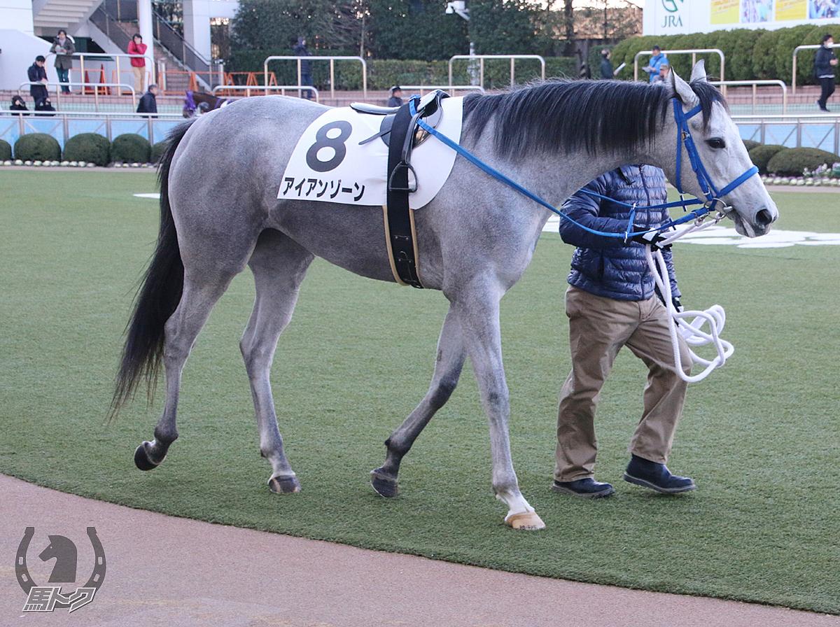 アイアンゾーンの馬体写真