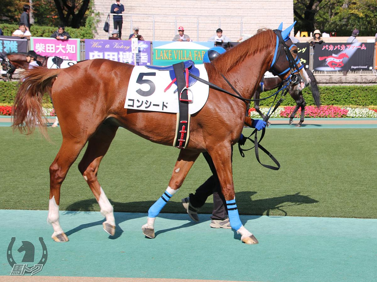 コンシードの馬体写真