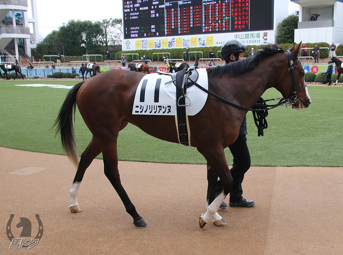 ニシノリリアンヌの馬体写真