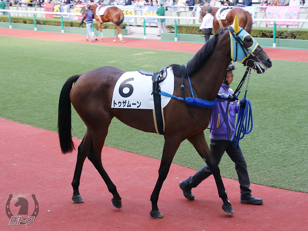 トゥザムーンの馬体写真