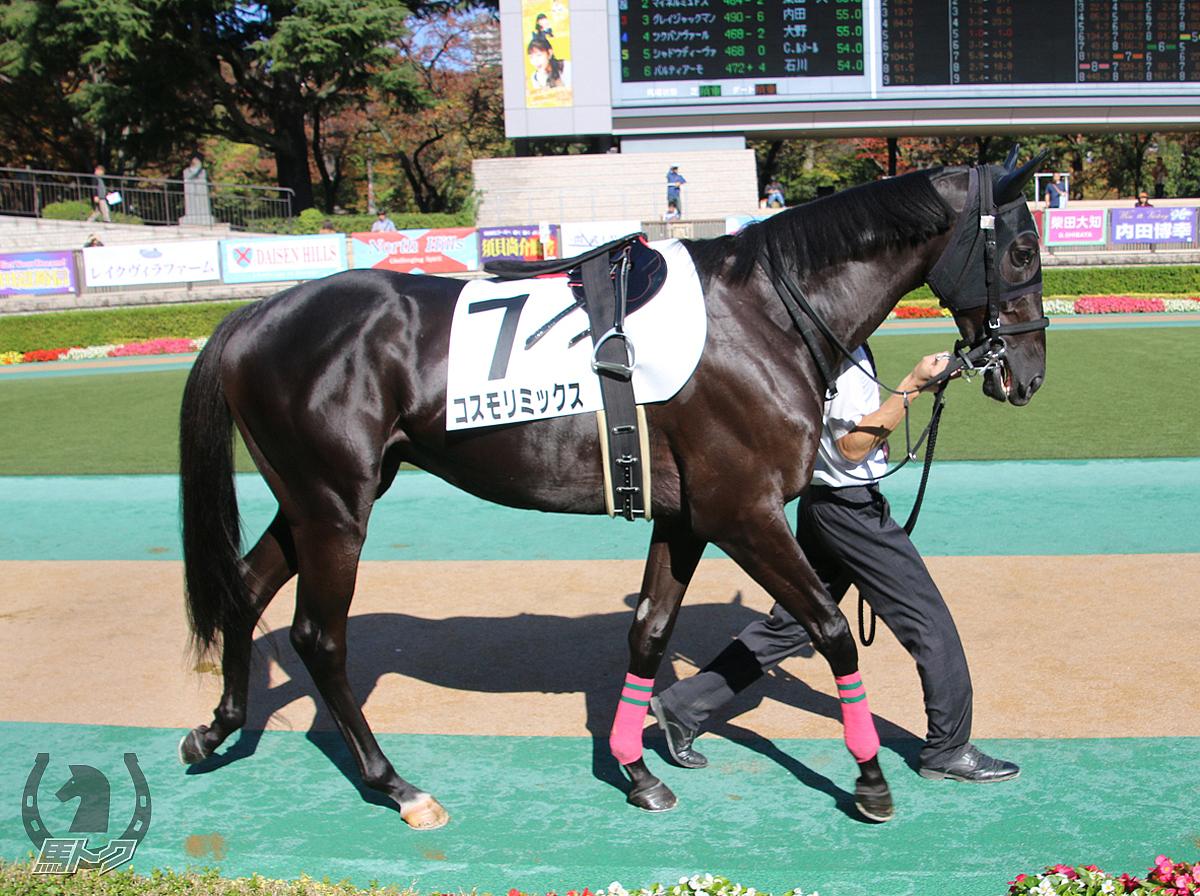 コスモリミックスの馬体写真