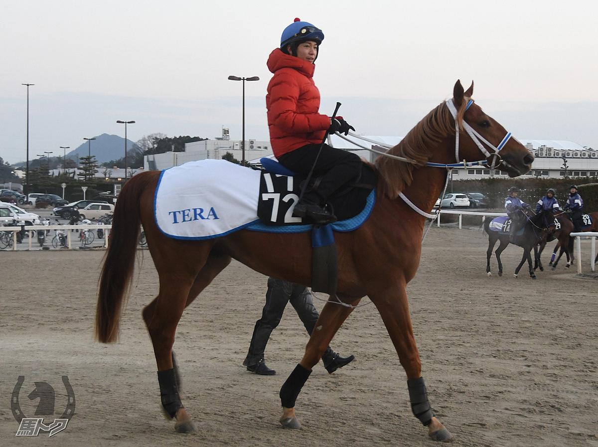 ヘニーストライカーの馬体写真