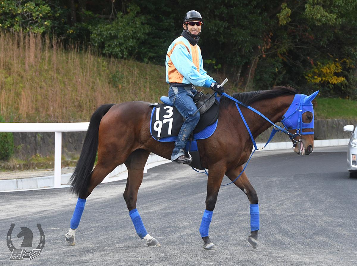 クロティルドの馬体写真