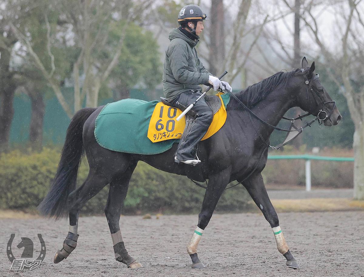ダノンキングリーの馬体写真