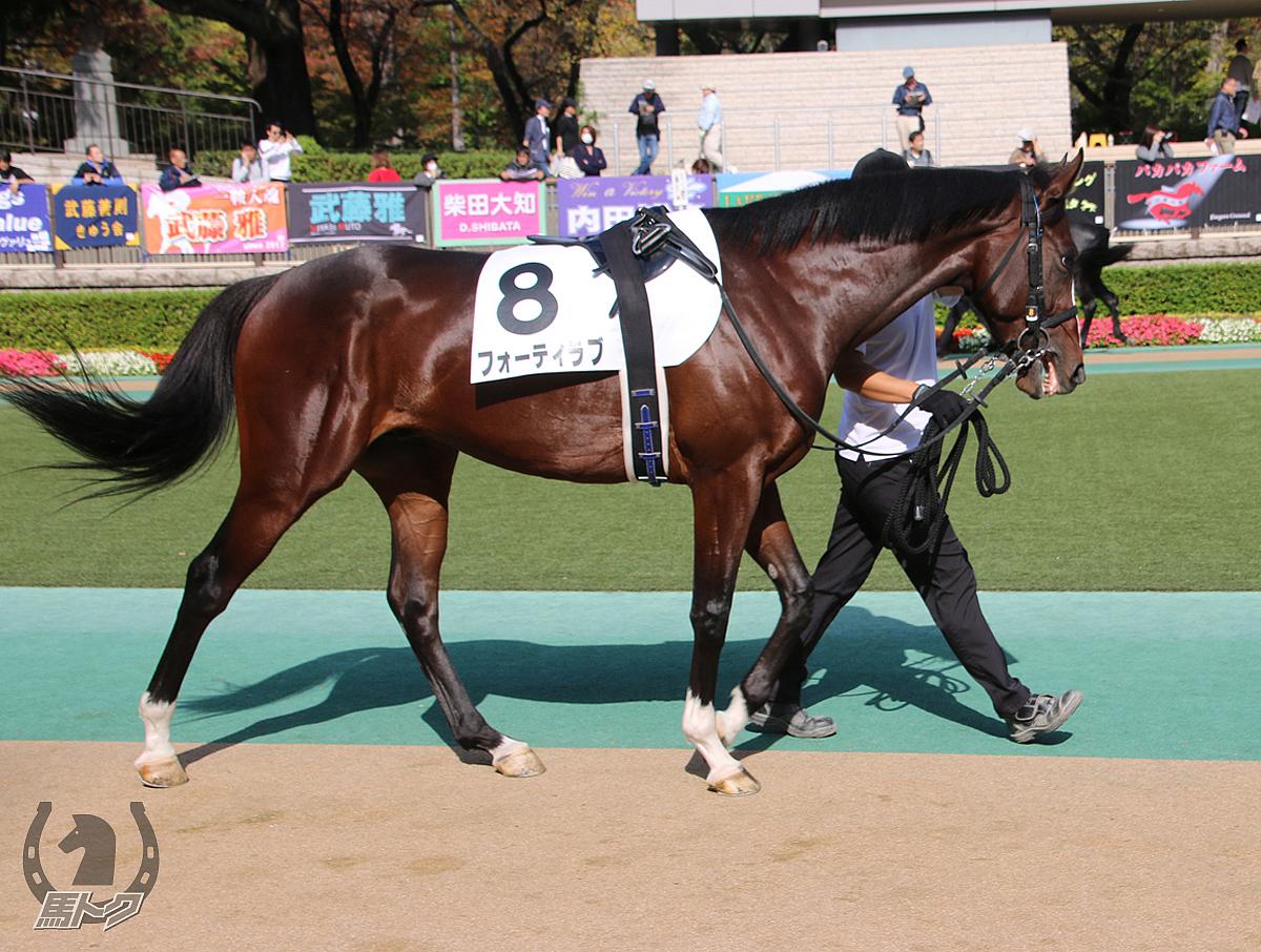 フォーティラブの馬体写真