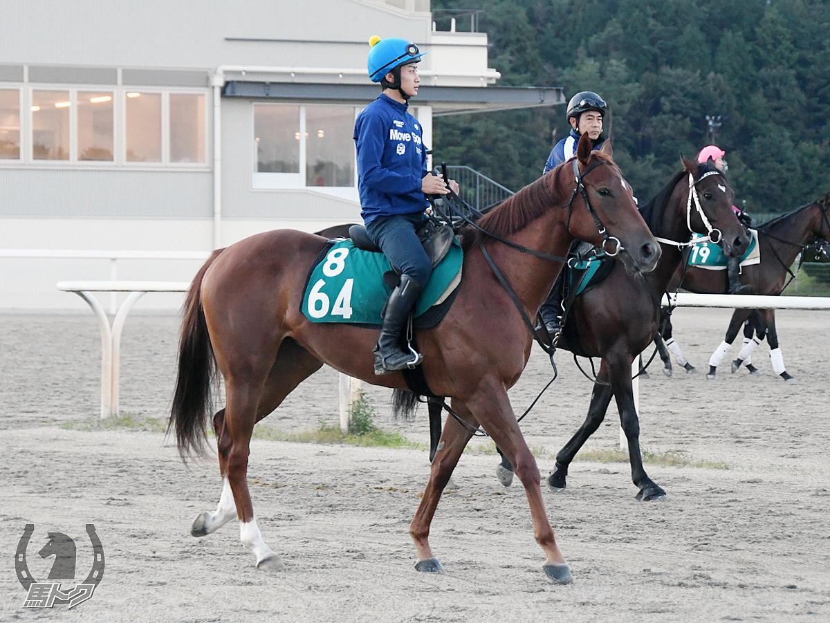 スズカルージュの馬体写真