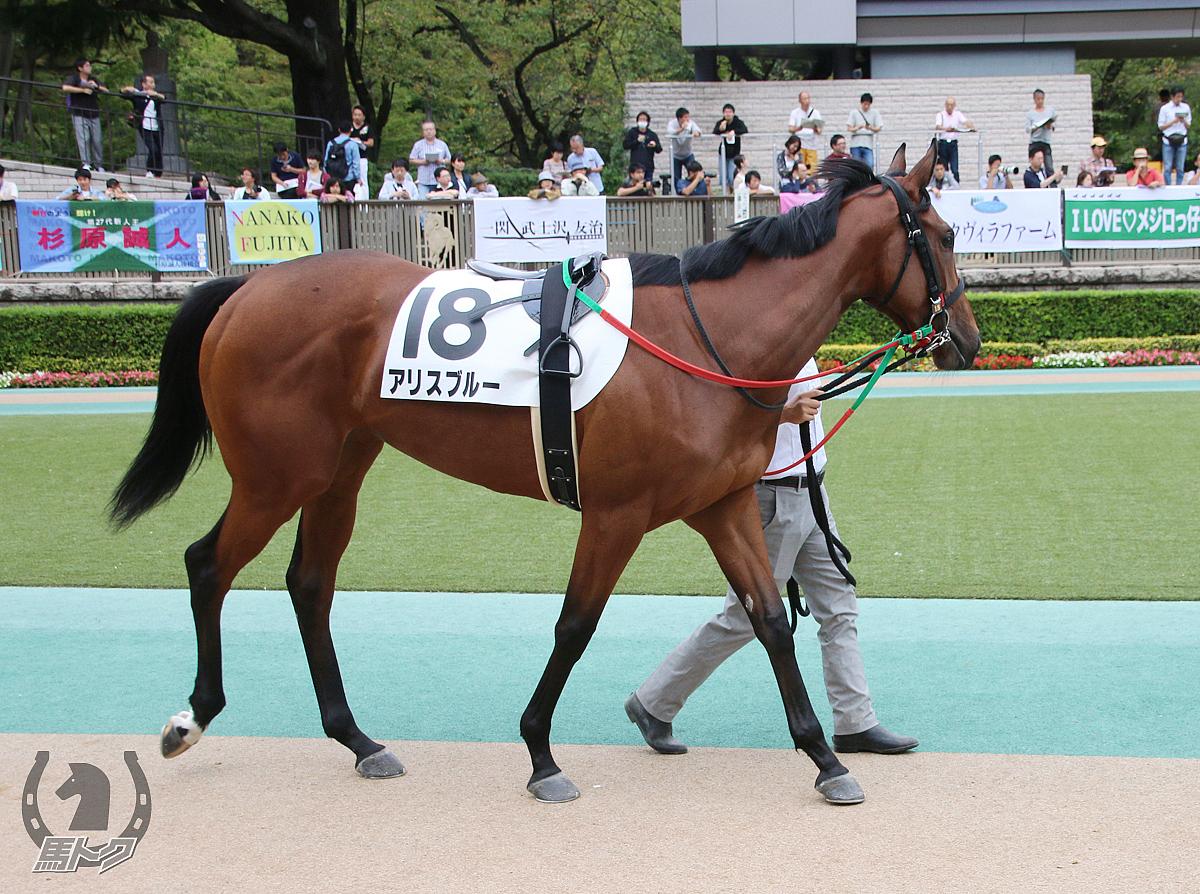 アリスブルーの馬体写真