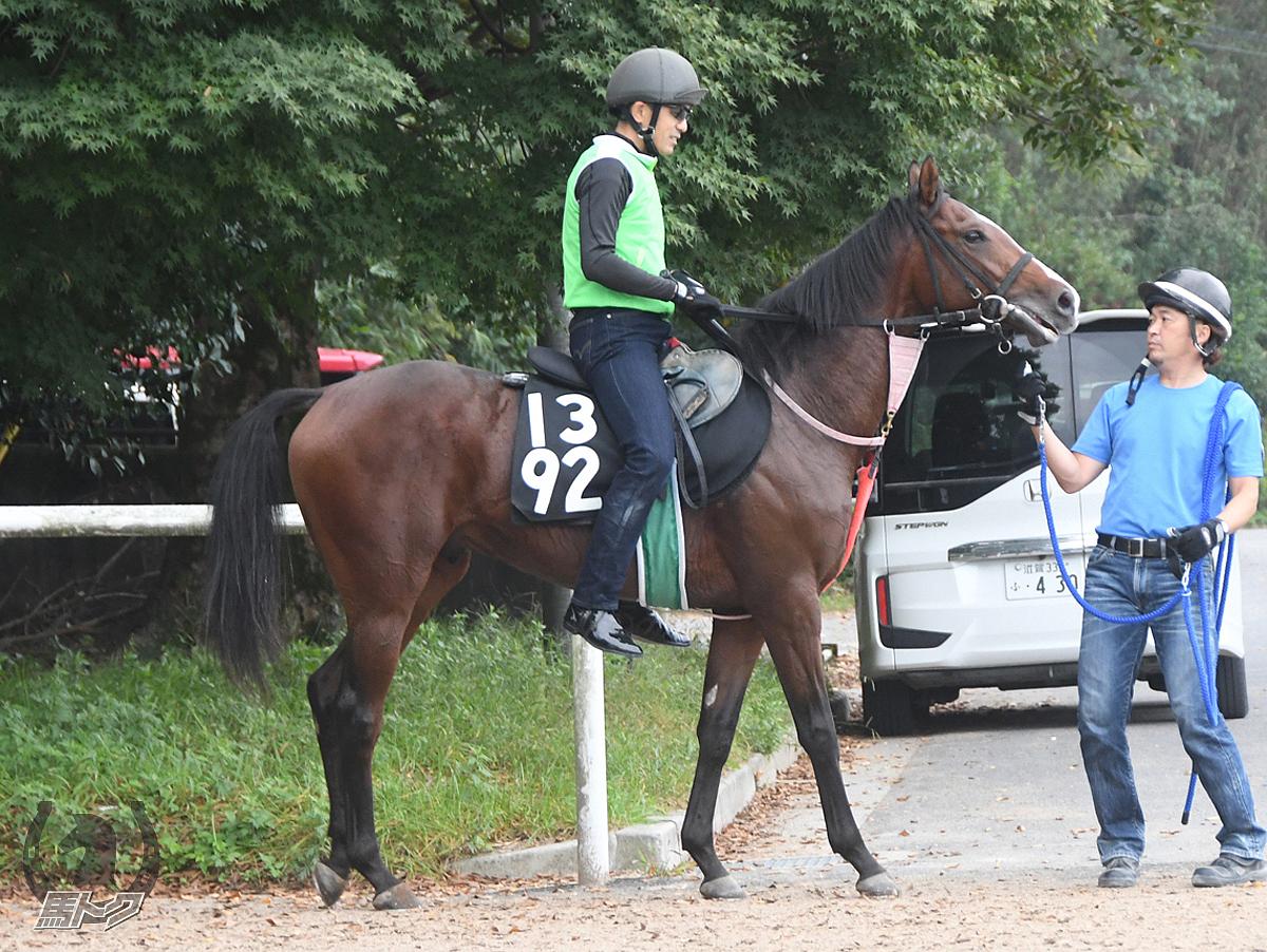 ヨドノオーシャンの馬体写真