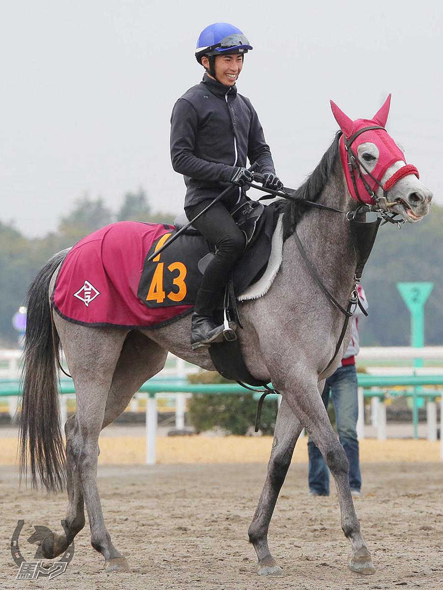 ウィンターリリーの馬体写真