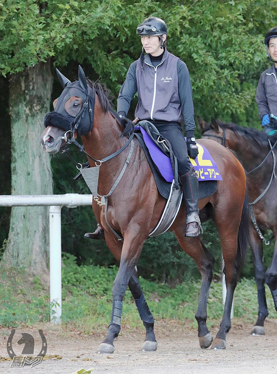 ハッピーアワーの馬体写真