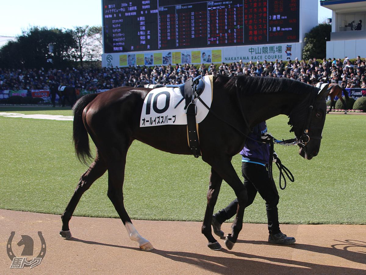 オールイズスパーブの馬体写真