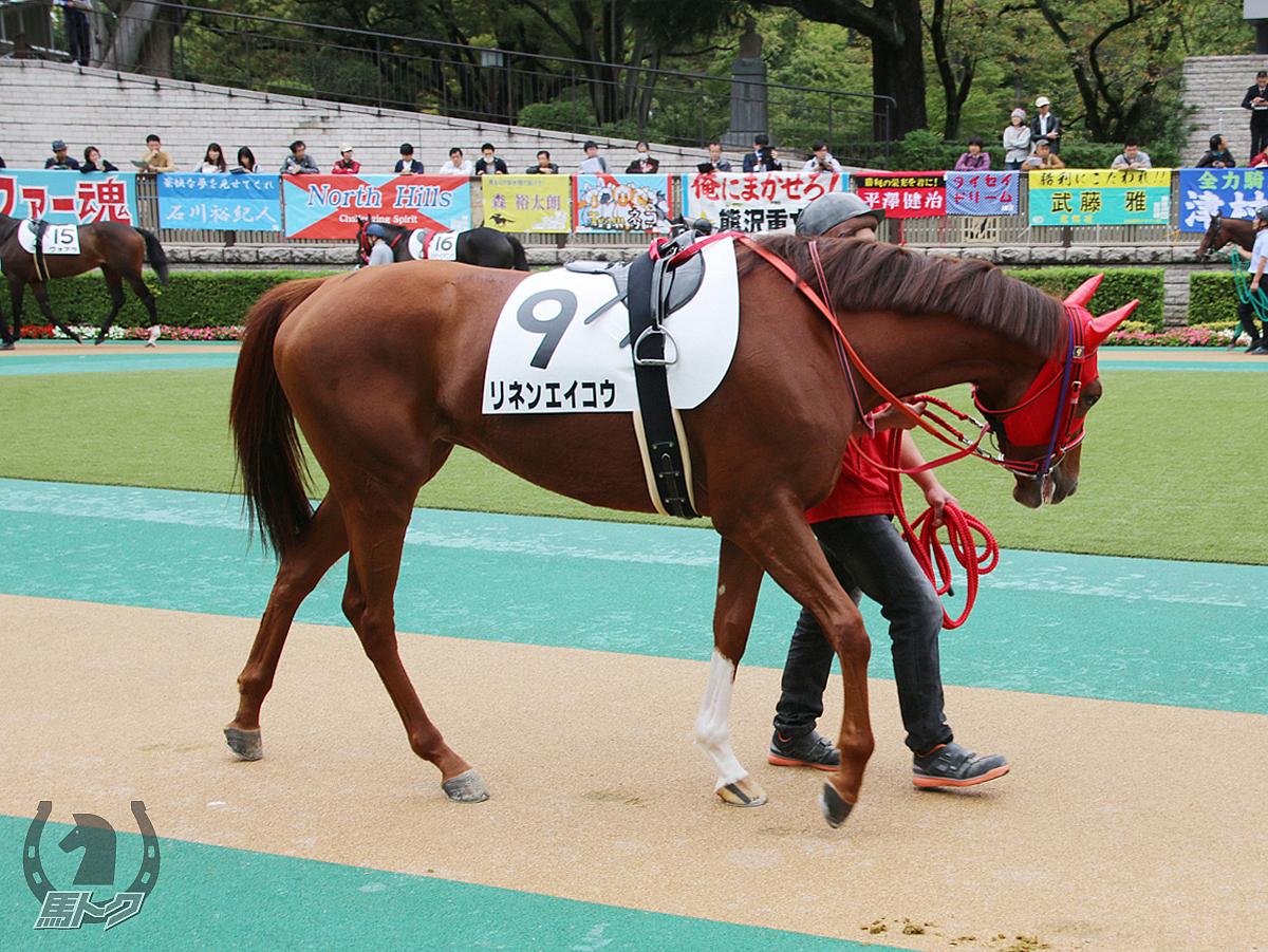 リネンエイコウの馬体写真
