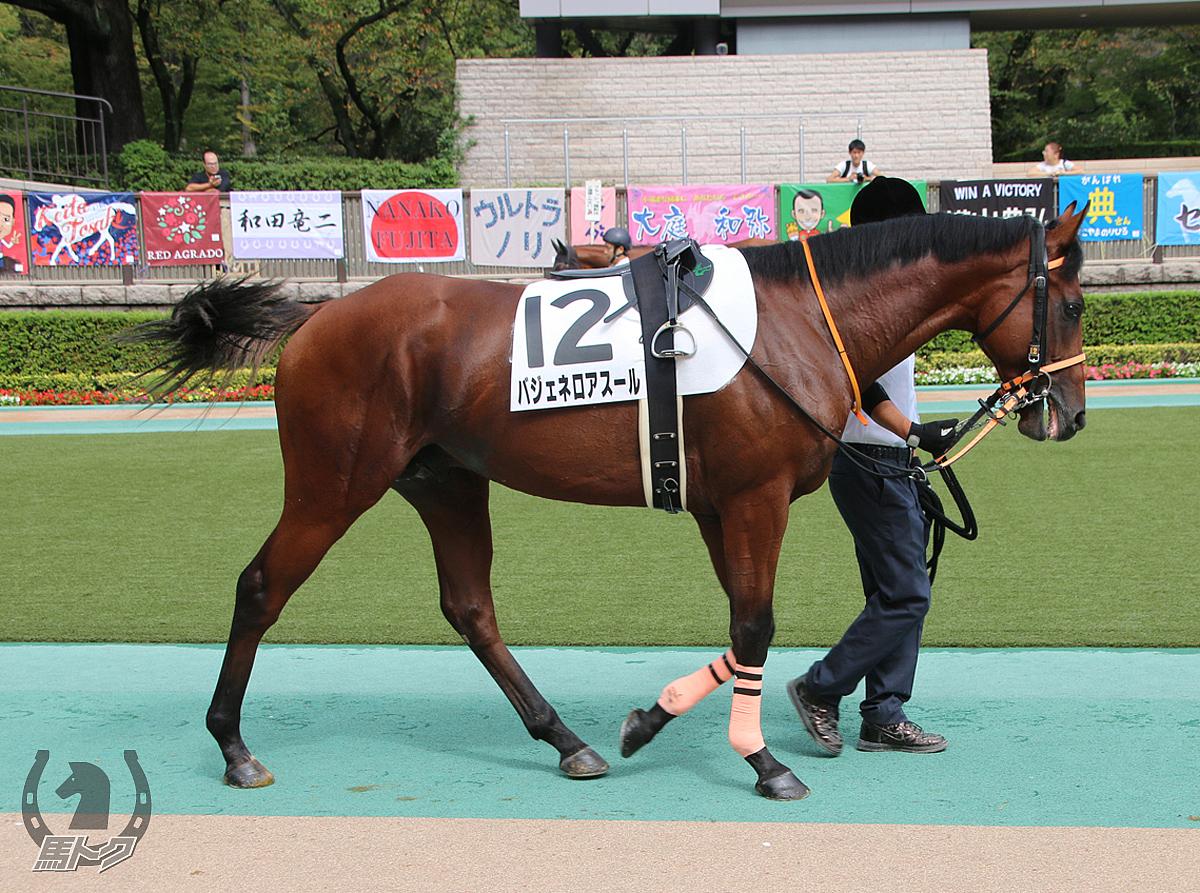 バジェネロアスールの馬体写真