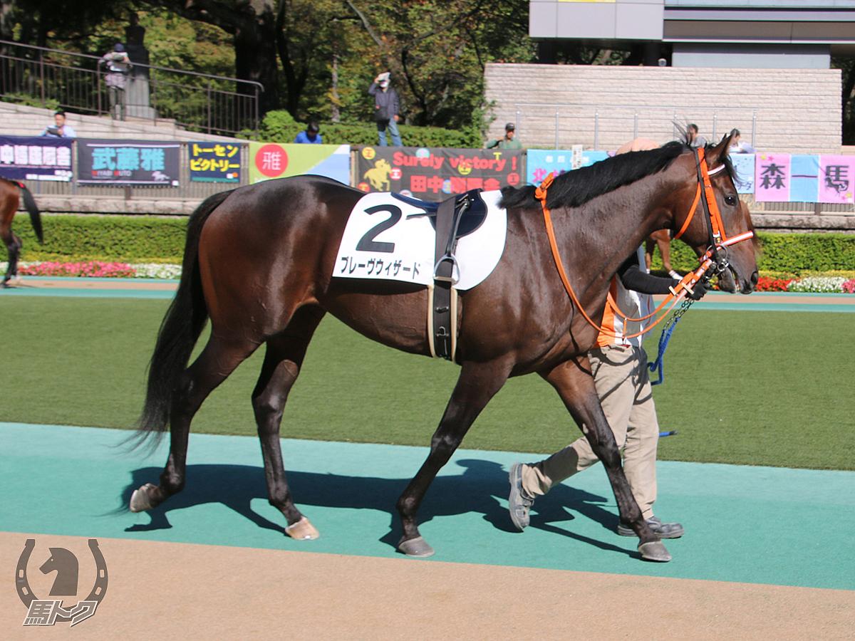 ブレーヴウィザードの馬体写真