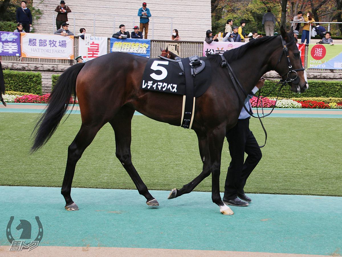 レディマクベスの馬体写真