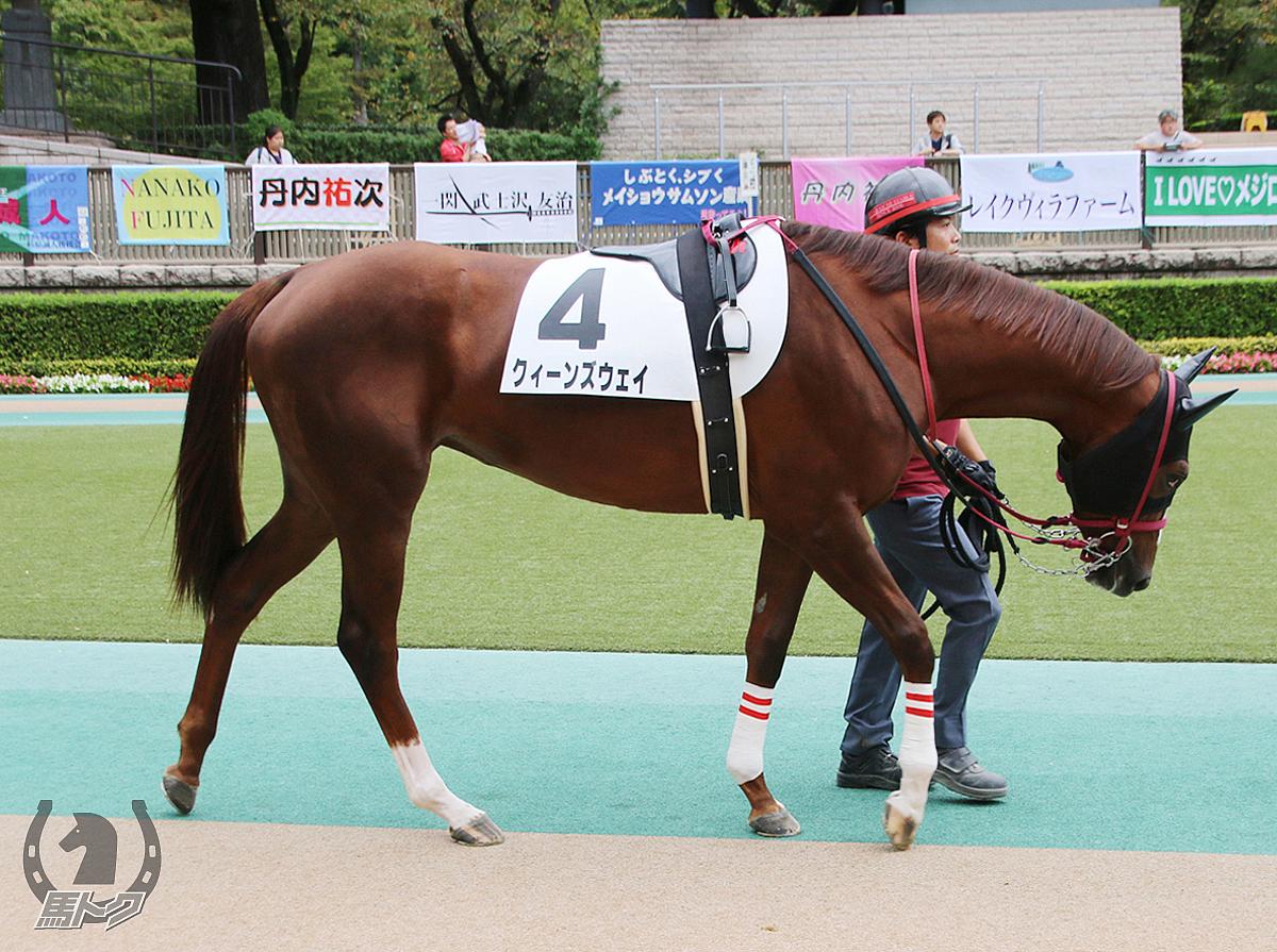 クィーンズウェイの馬体写真