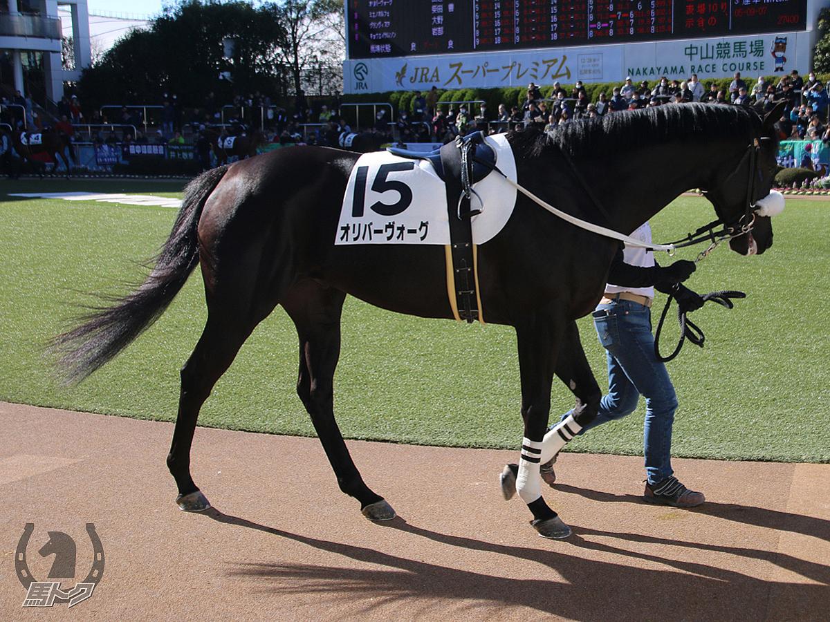 オリバーヴォーグの馬体写真