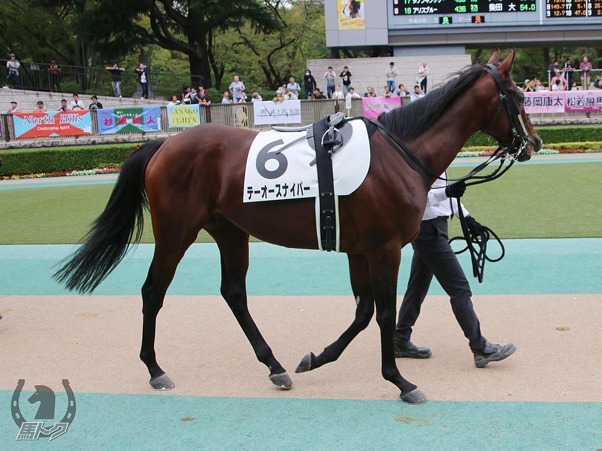 テーオースナイパーの馬体写真