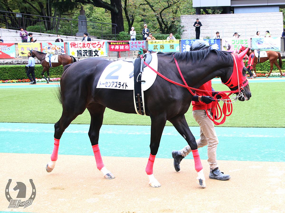 トーセンアズライトの馬体写真