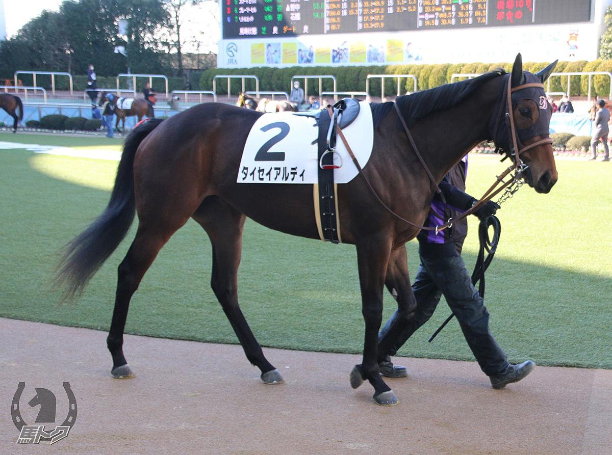 タイセイアルディの馬体写真