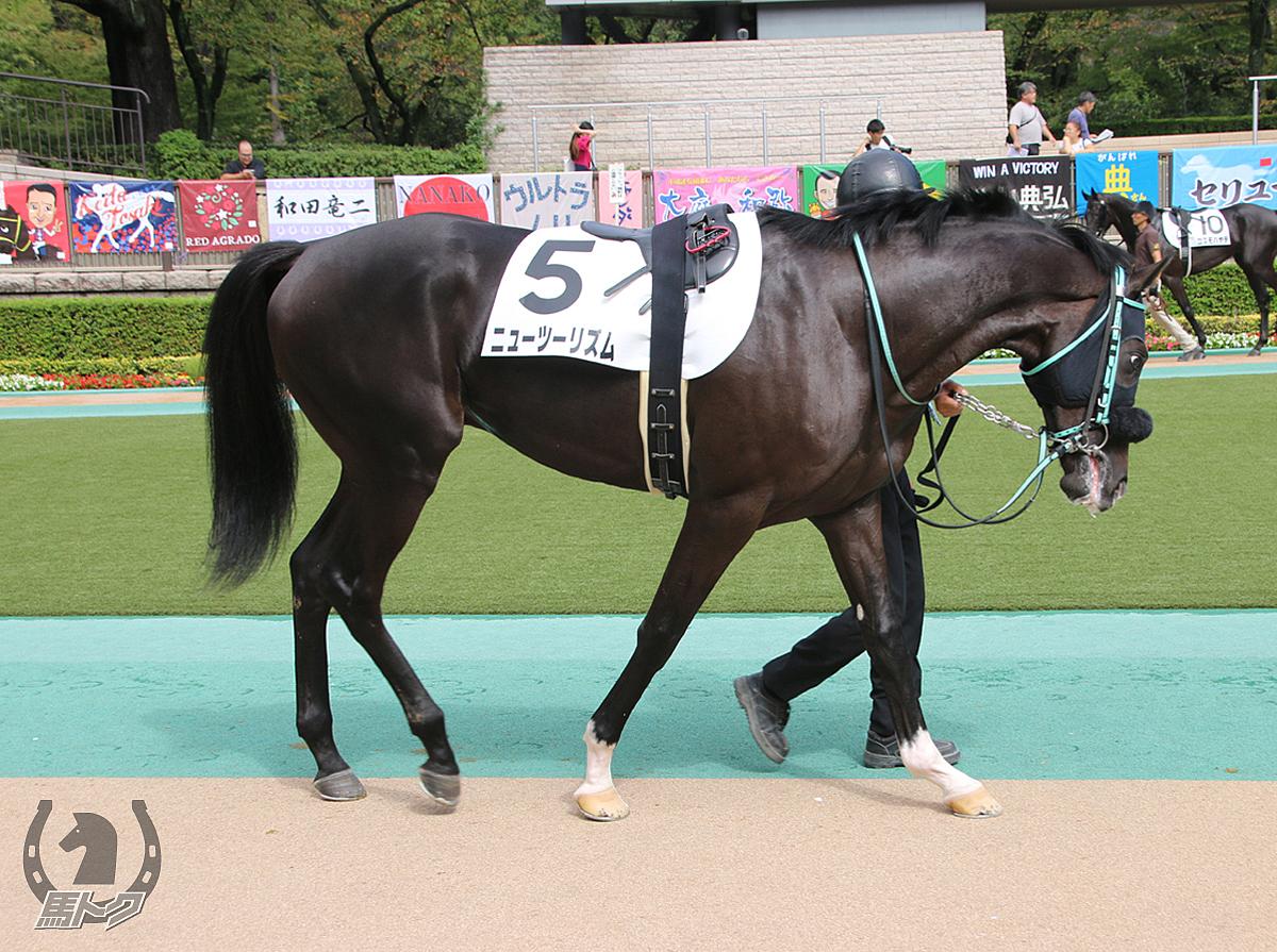 ニューツーリズムの馬体写真