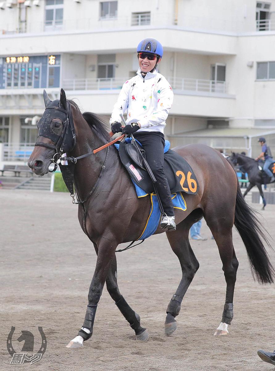 アップライトスピンの馬体写真