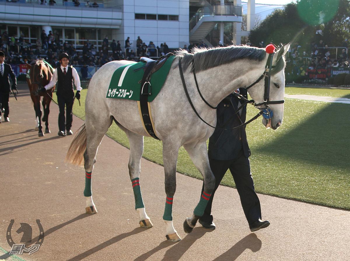 カイザースクルーンの馬体写真