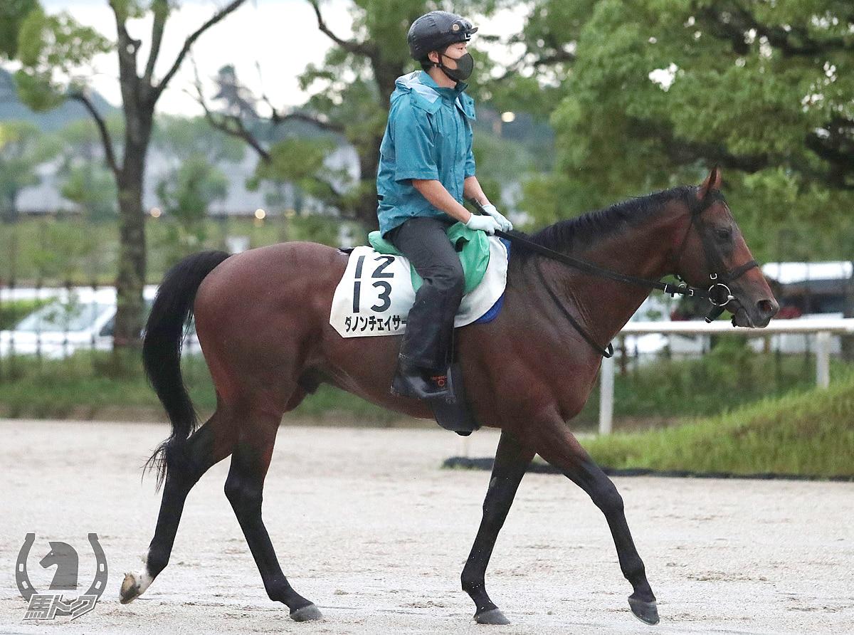 ダノンチェイサーの馬体写真