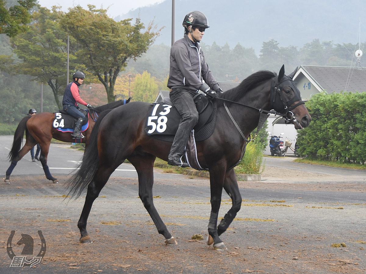 ウォーターリベルテの馬体写真