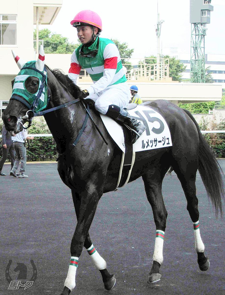ルメッサージュの馬体写真