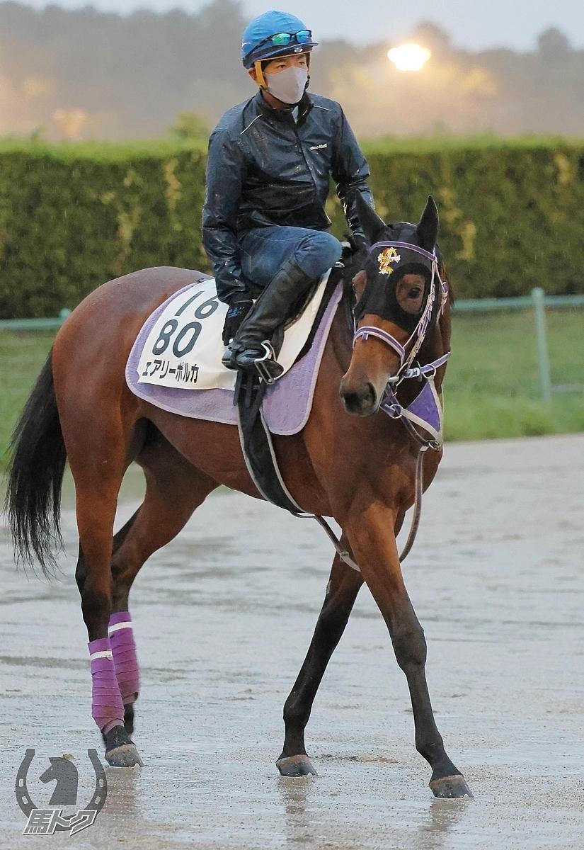 フェアリーポルカの馬体写真