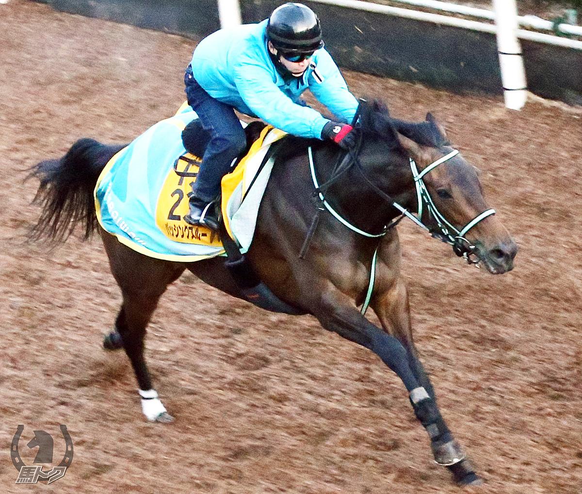 パッシングスルーの馬体写真