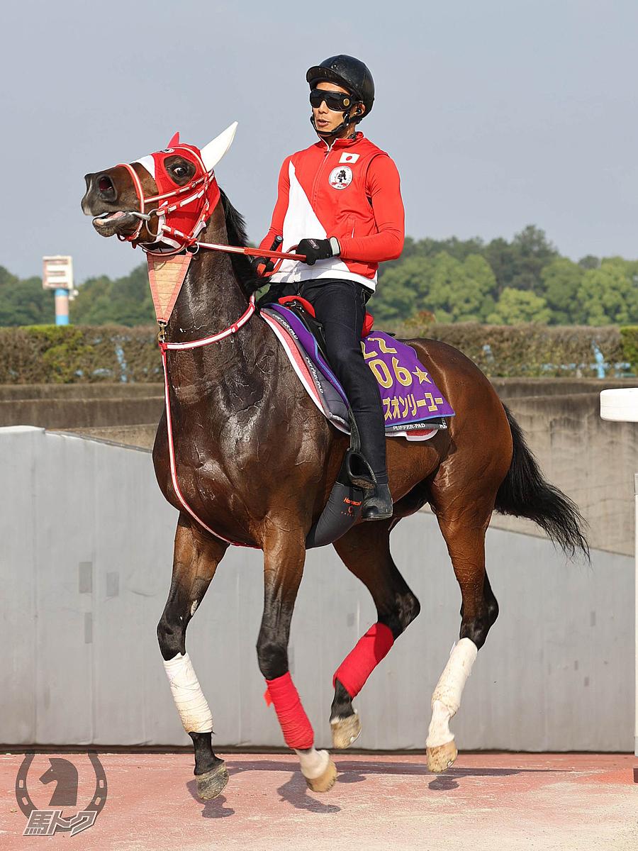 ラヴズオンリーユーの馬体写真