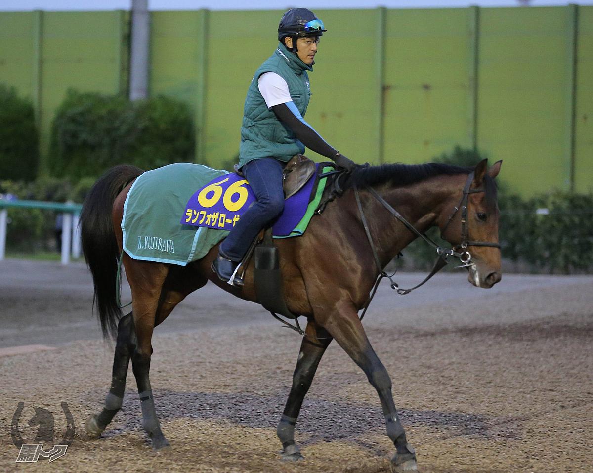 ランフォザローゼスの馬体写真