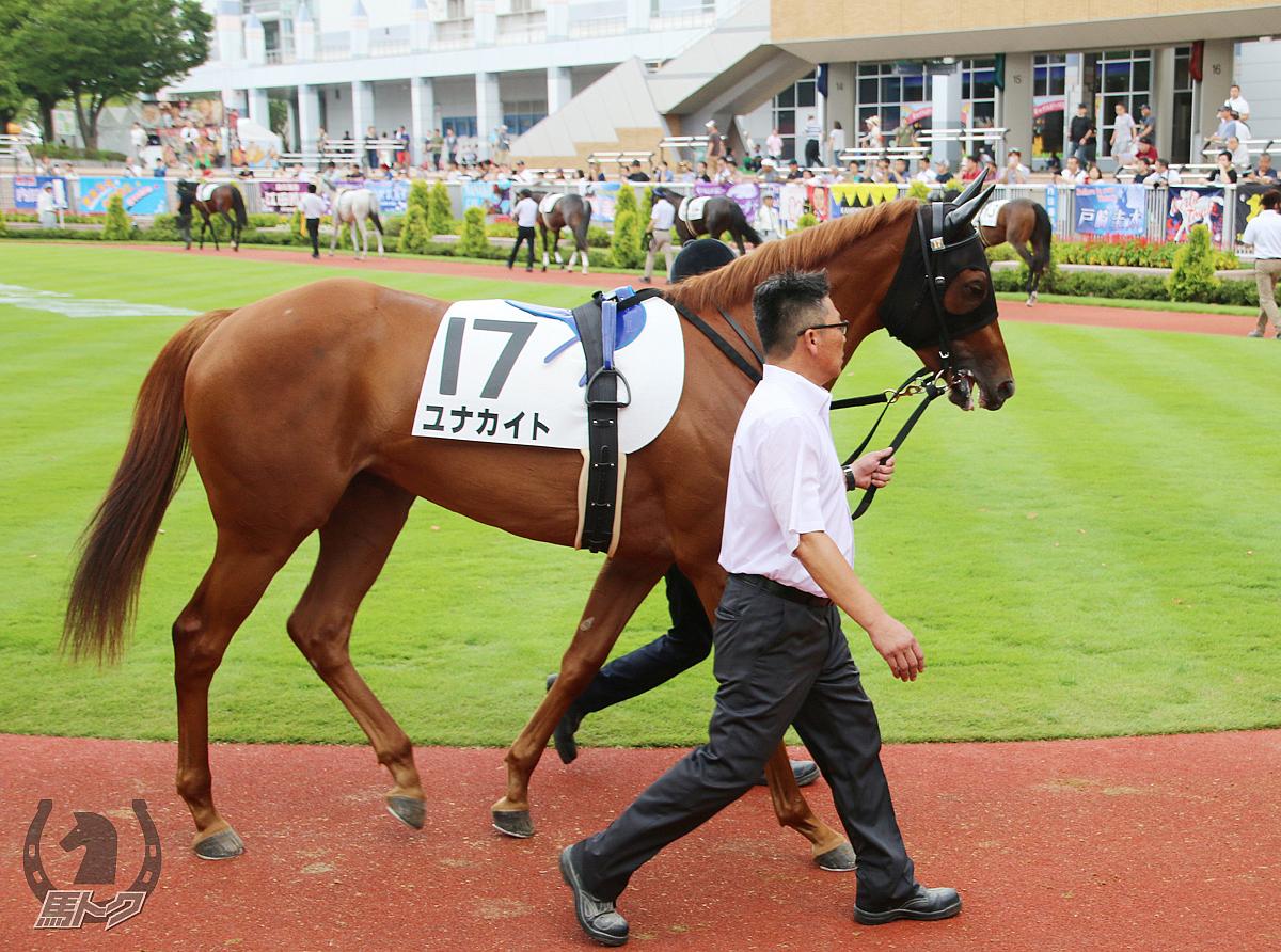 ユナカイトの馬体写真