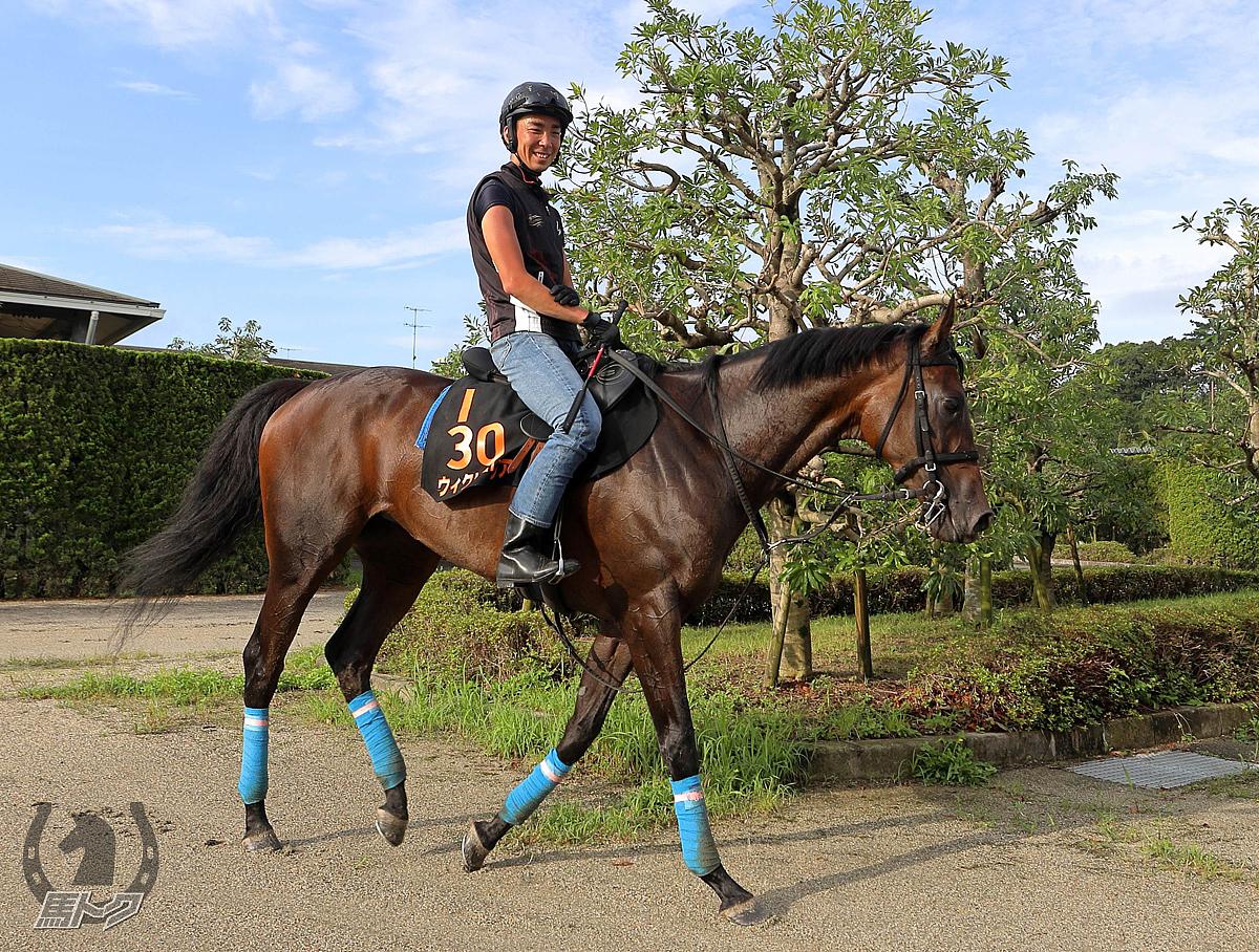 ウィクトーリアの馬体写真
