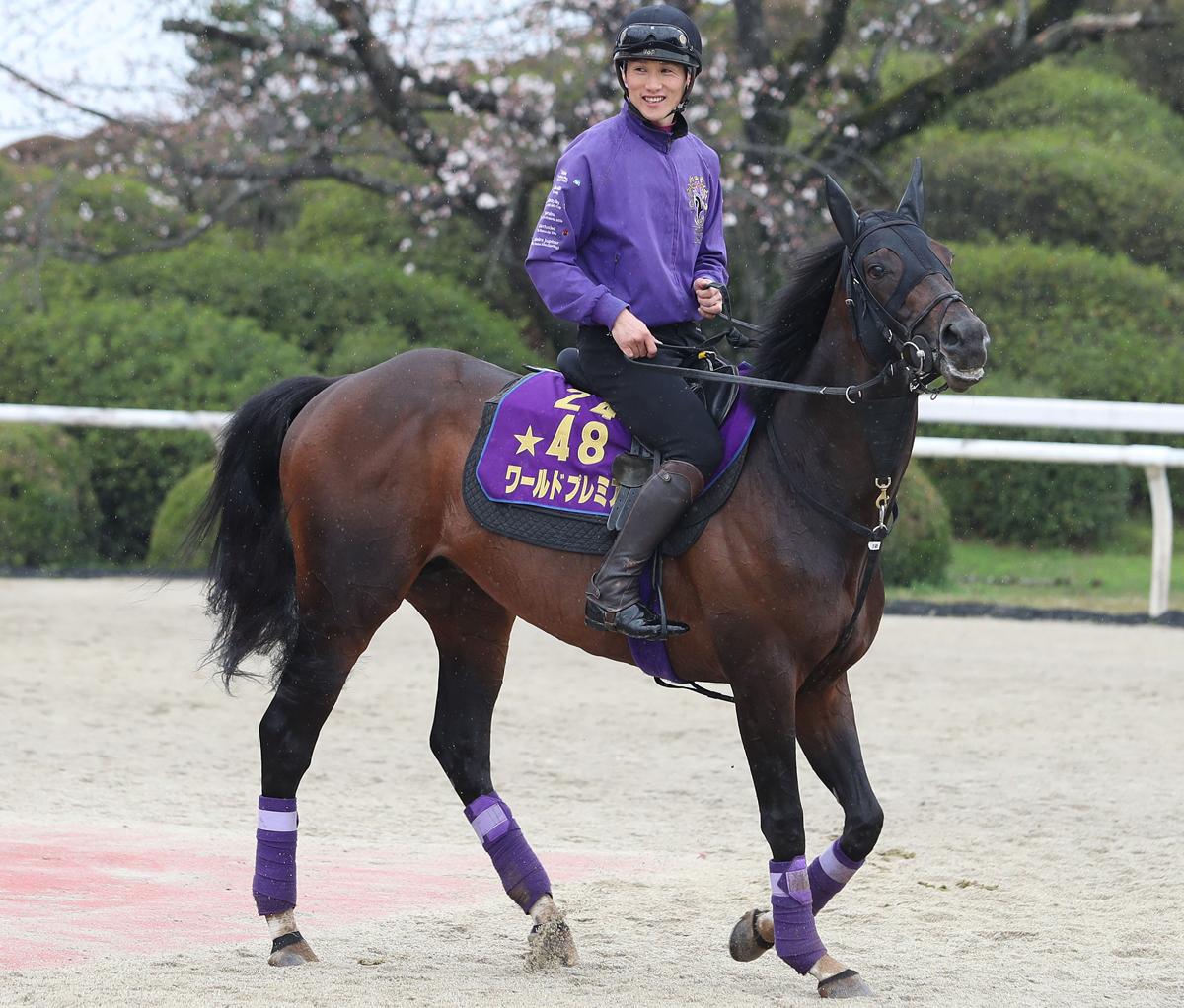 ワールドプレミアの馬体写真