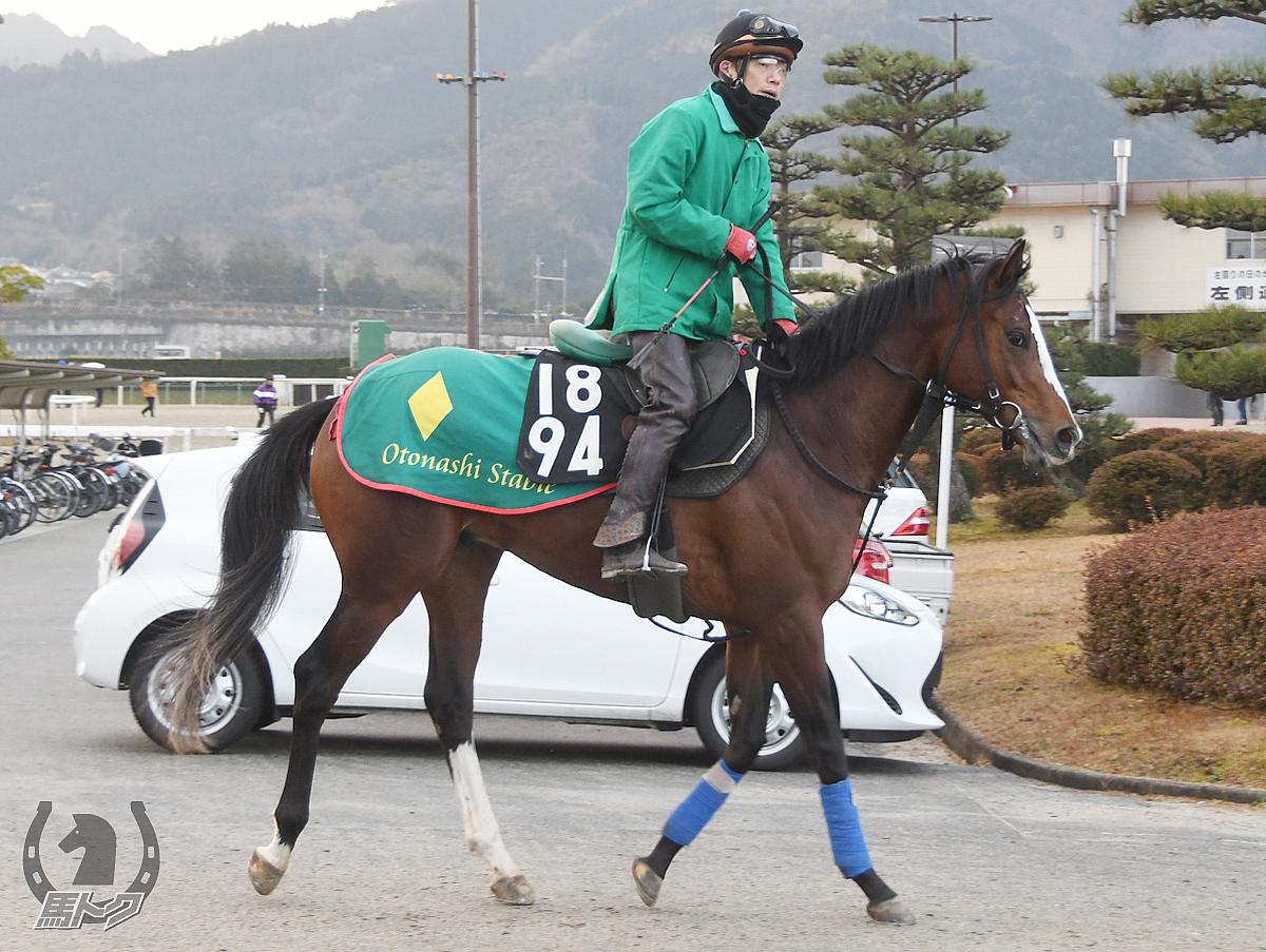 シーリアスラブの馬体写真