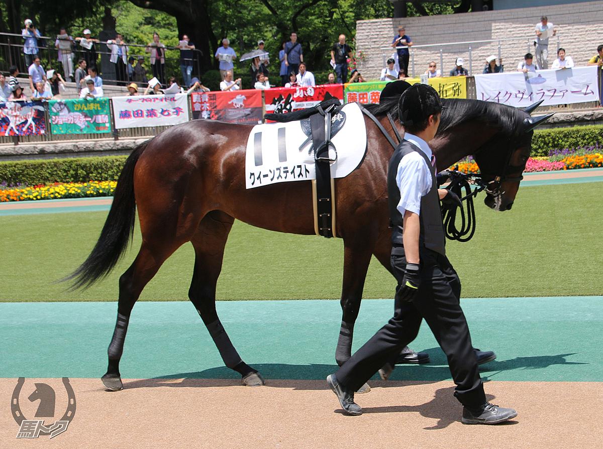 クイーンズテイストの馬体写真