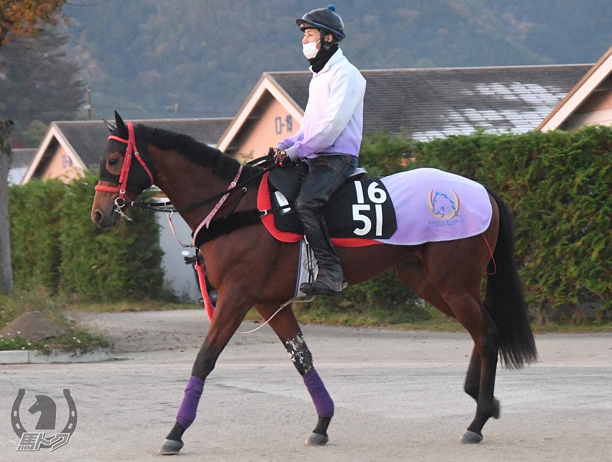 レッドガニアンの馬体写真