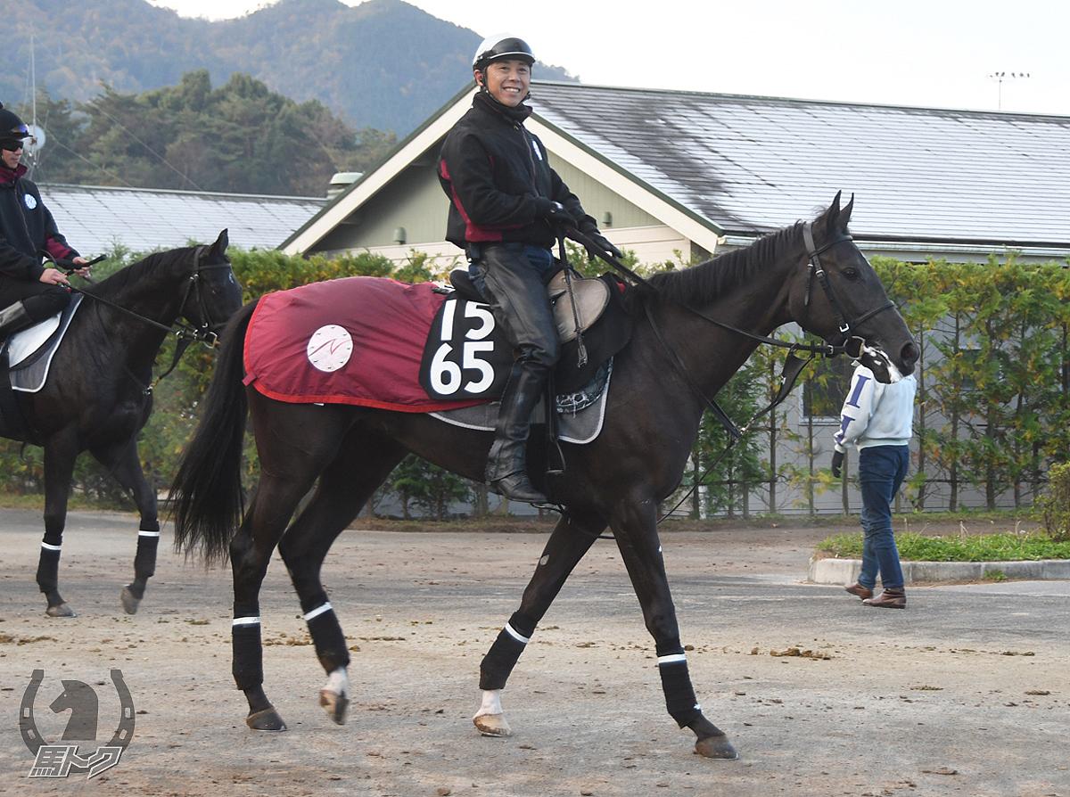 アイスバーグアリーの馬体写真