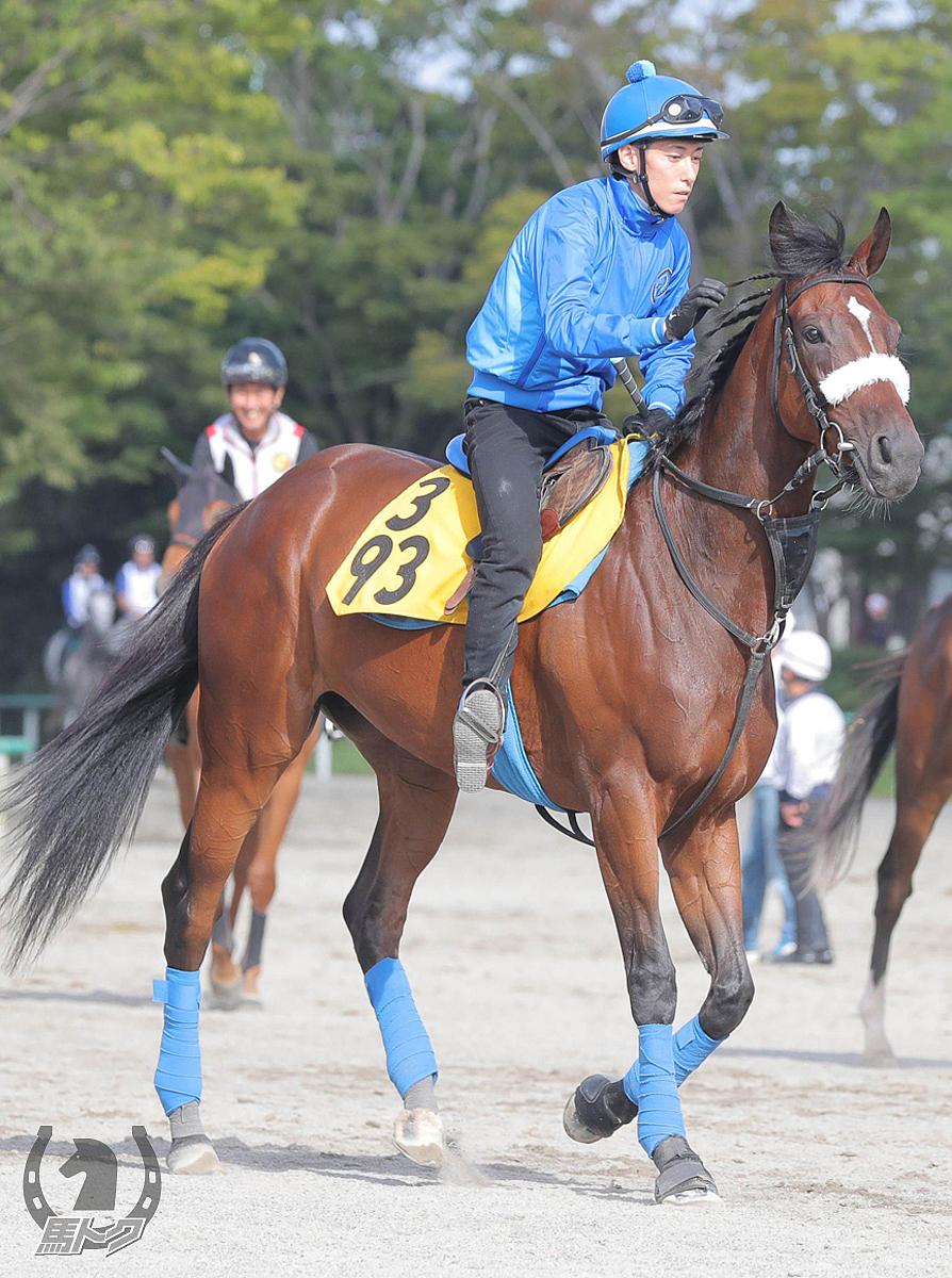 カレンブーケドールの馬体写真