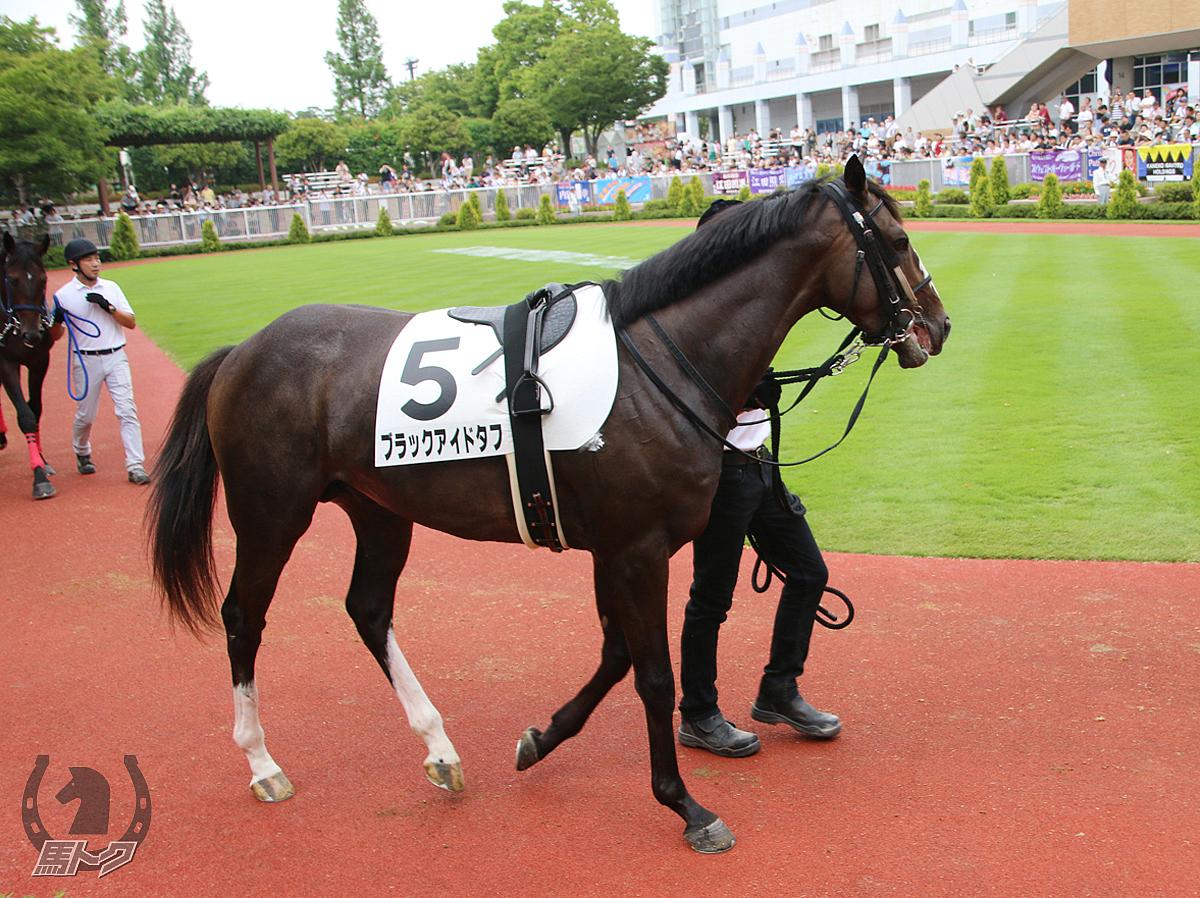 ブラックアイドタフの馬体写真