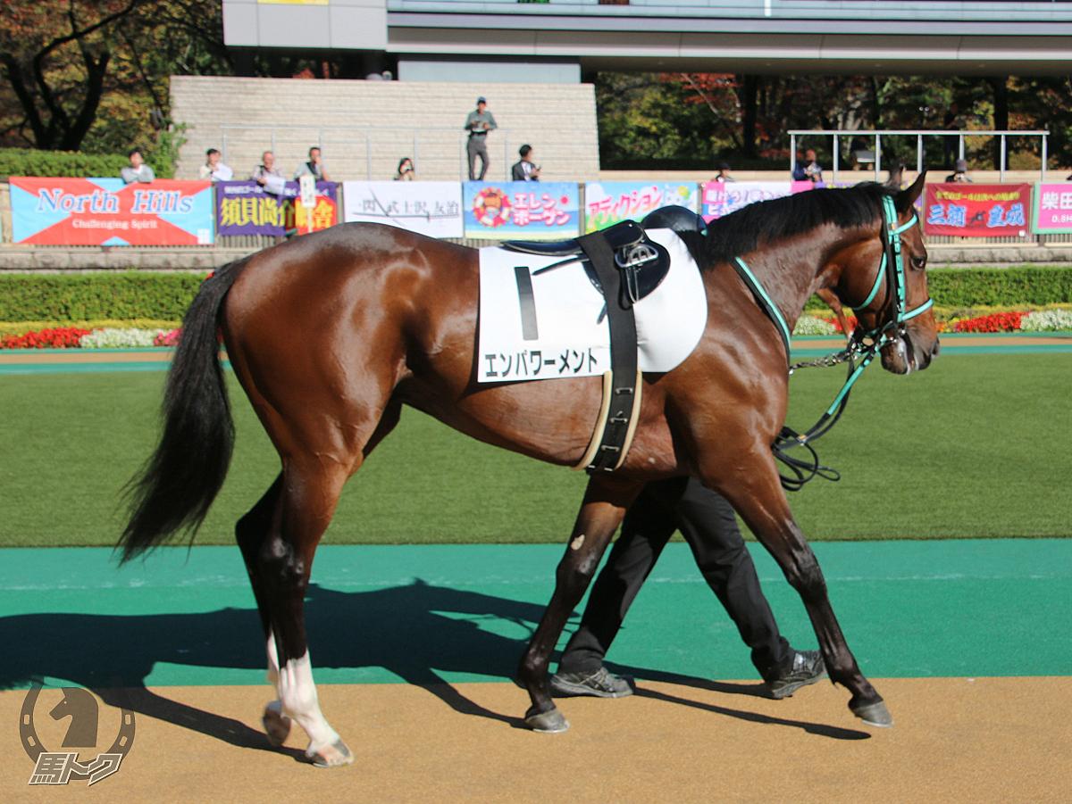 エンパワーメントの馬体写真