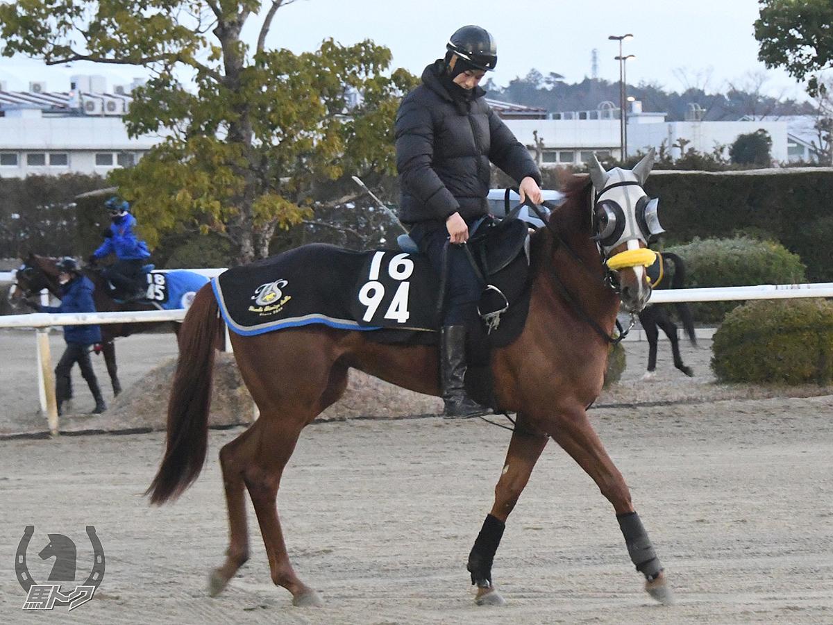 エターナルディーバの馬体写真