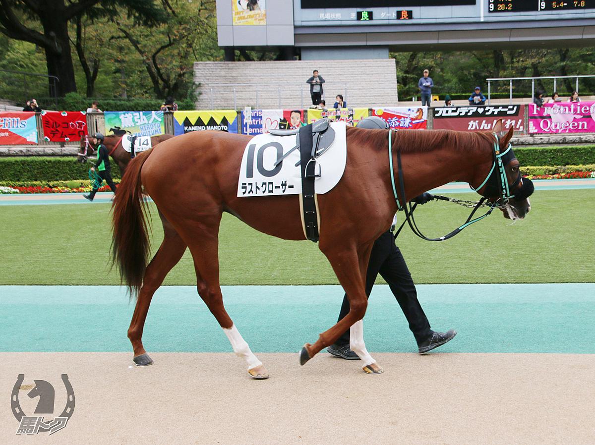 ラストクローザーの馬体写真