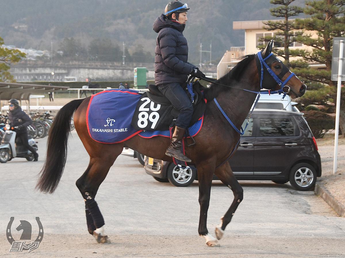 サンレイブランコの馬体写真